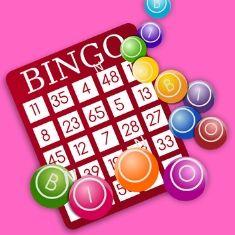 conocer gente bingo loco