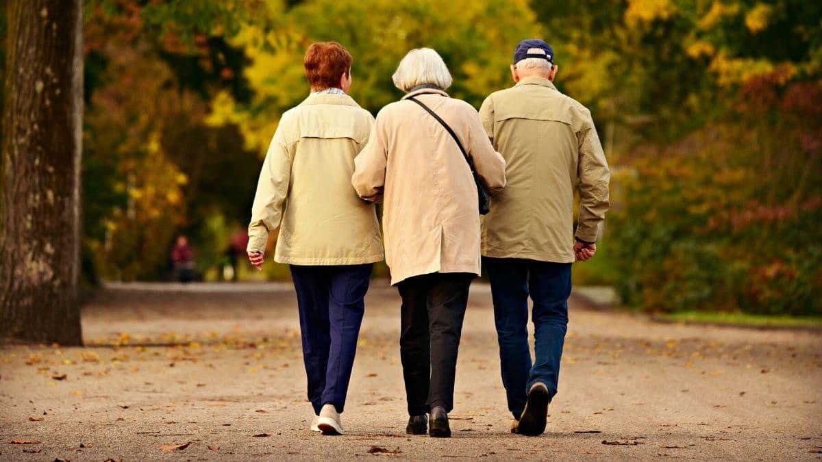 dinámicas para personas mayores