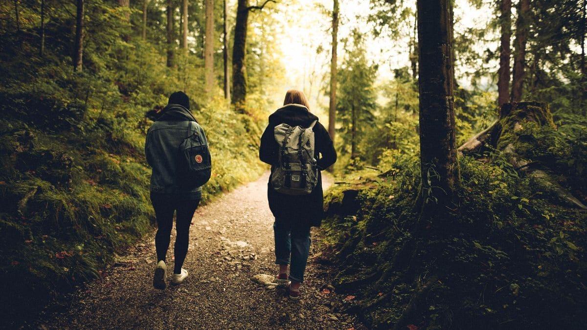 ¿Conoces todos los beneficios del senderismo como actividad grupal?