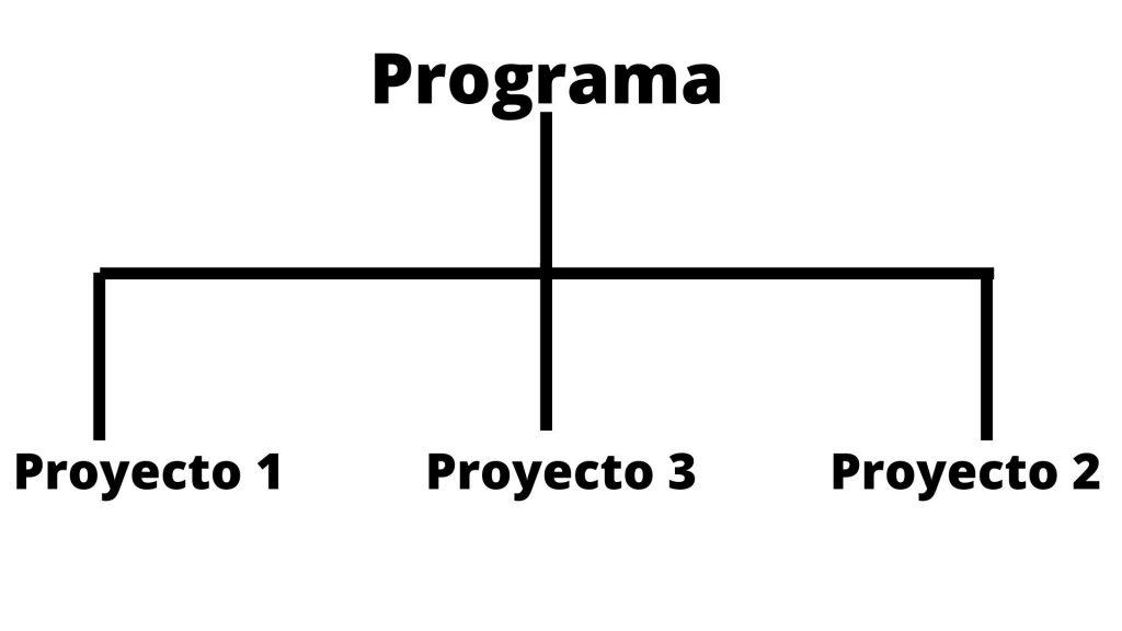 un programa de animación sociocultural ha de tener varios objetivos que se cumplen con distintos proyectos